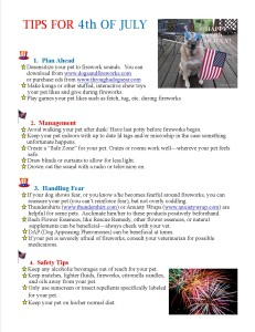4th of July Tips_2013