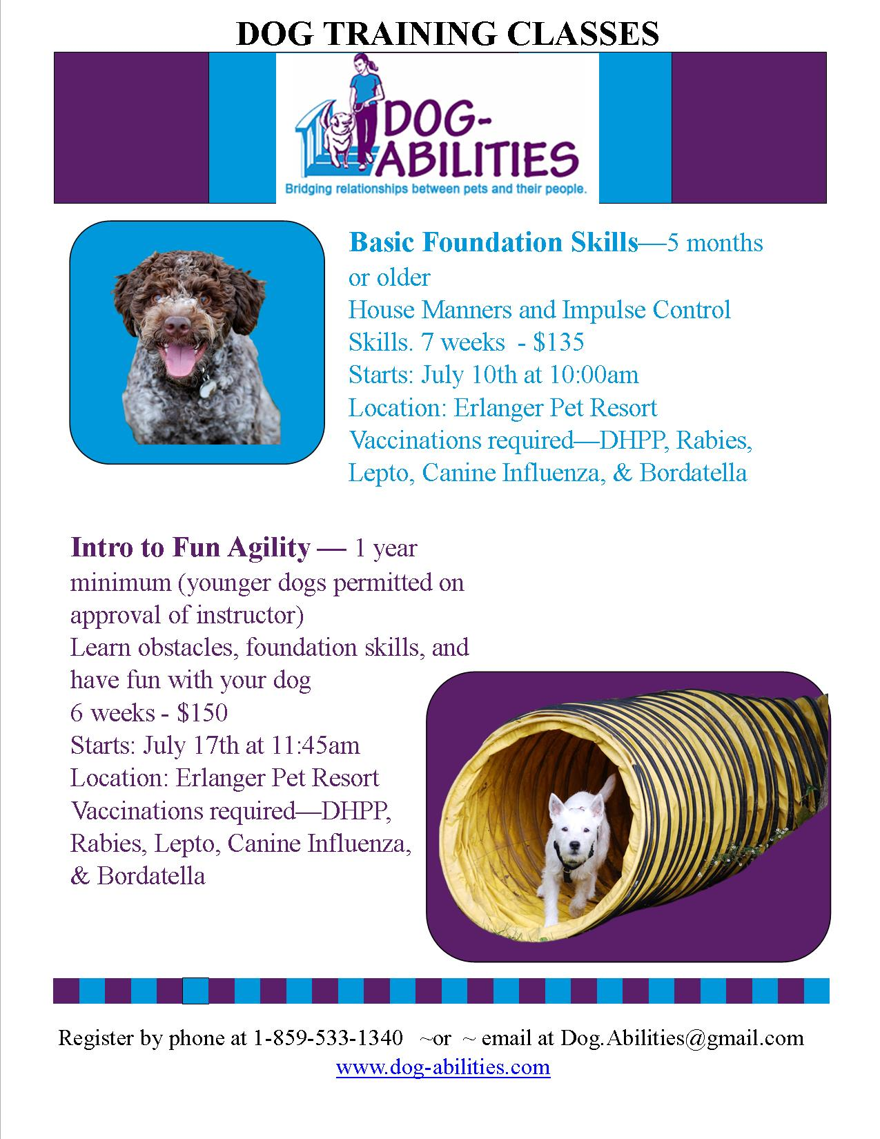 Dog-Abilities classes - Erlanger Vet-July2016